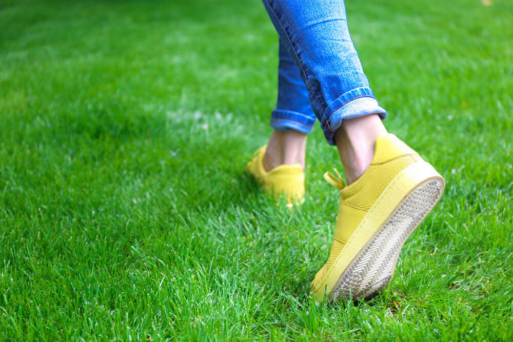 Walking on grass can hurt its growth, especially if it has just been planted.